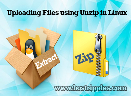 Uploading Files using Unzip in Linux